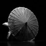 mirror_altrarte_danza_diversamente_abili_fabbrico_claudio_messori04