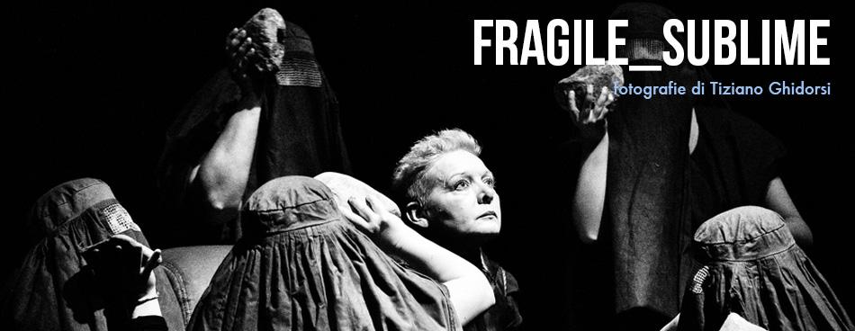 banner_foto_fragile